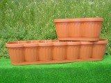 Балконный ящик «Begonia»