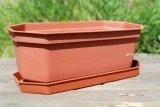 Горшок для кактусов и суккулентов «Коралл» терракотового цвета