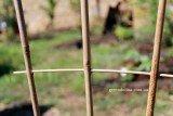 Лесенки для цветов и вьющихся растений из бамбука