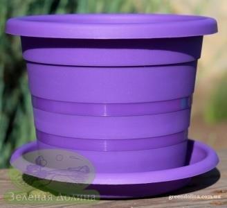 оршок для фиалки Краковский фиолетовый