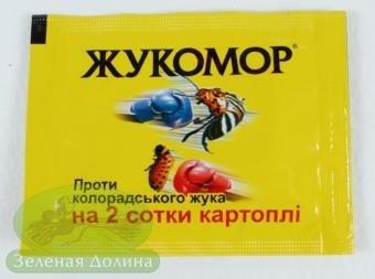 Фото 2 - Жукомор