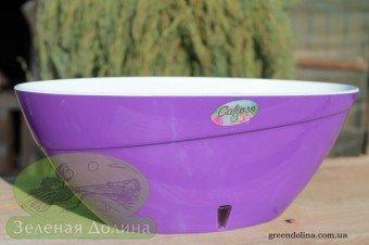 Santino Calipso фиолетовое кашпо
