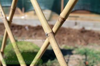 Решётка из бамбука